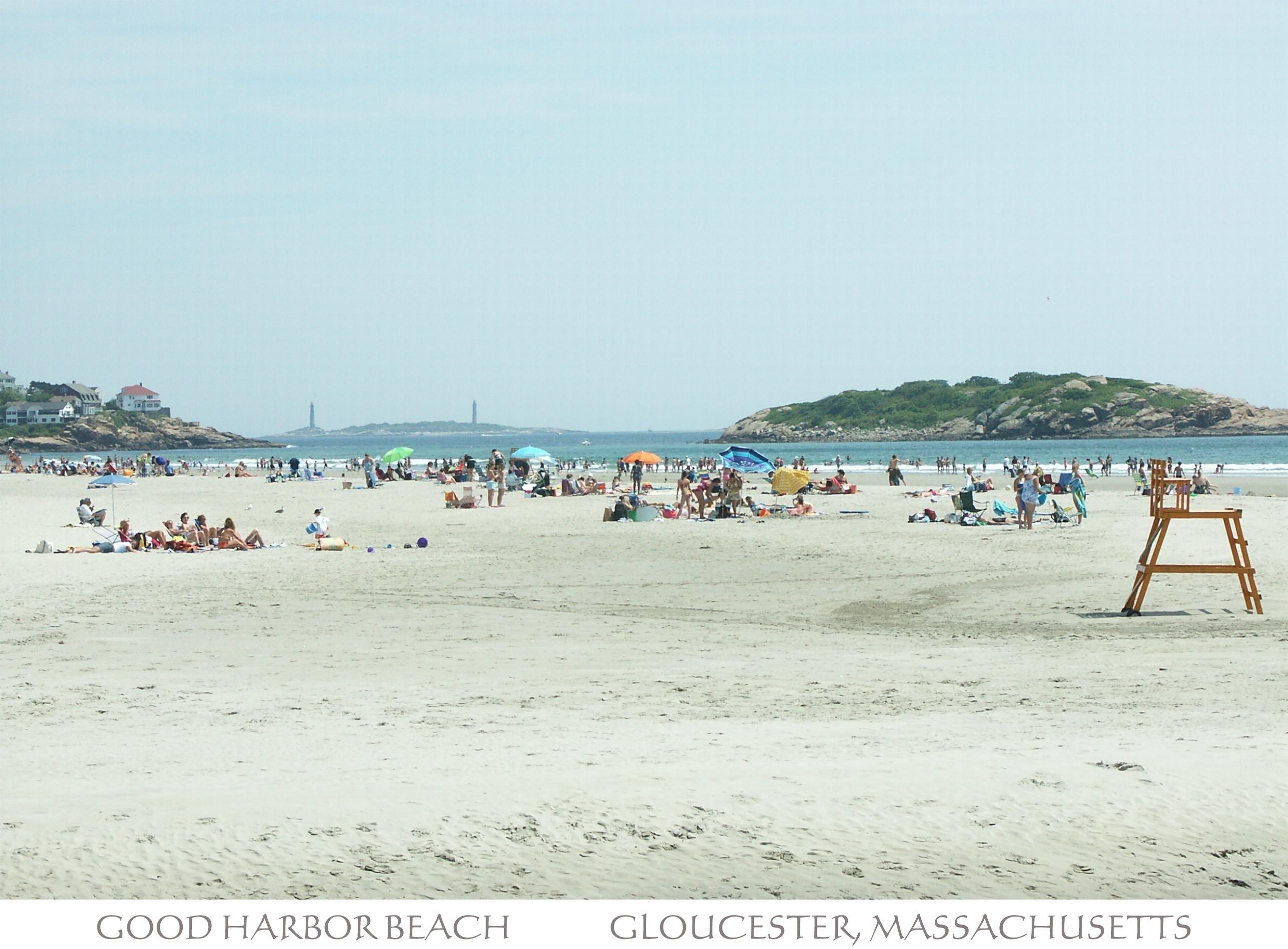Treasure Island Beach Zip
